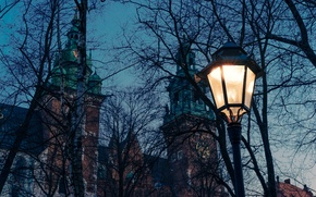 Picture twilight, cathedral, trees, dusk, Poland, lamp, branches, church, Krakow
