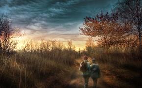 Picture forest, children, treatment, walk
