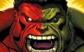 Picture marvel, comics, hulk