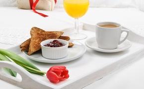 Picture flower, Tulip, coffee, Breakfast, juice, plate, jam, tray, toast, orange