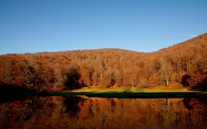 Picture autumn, forest, lake, colors, forest, Autumn, lake, fall