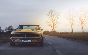 Picture Chevrolet, Muscle, Camaro, USA, Car, Power, Front, Sun, Yellow, 1968, Oldy