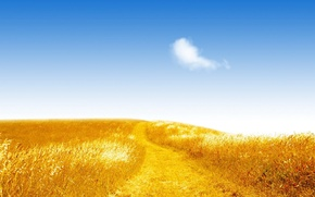 Wallpaper road, field, the sky, light