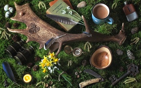 Wallpaper flowers, pebbles, watch, books, moss, candle, feathers, key, mug, binoculars, horns, bumps, snowdrop, Narcissus