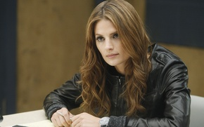 Picture Castle, Stana Katic, Mill CATIC, Kate