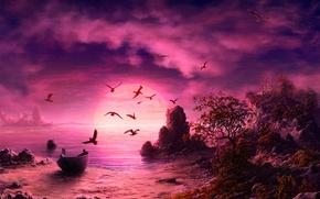 Picture sea, sunset, seagulls