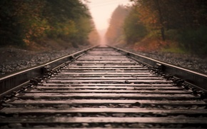Picture macro, trees, nature, the way, fog, travel, stones, tree, mood, mood, landscapes, stone, view, rails, ...