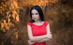 Picture autumn, look, leaves, girl, face, red, portrait, earrings, dress, brunette, touch, beautiful, the beauty, gesture, …
