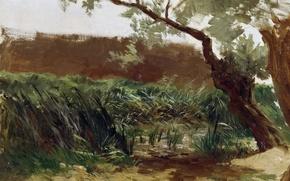 Picture landscape, nature, picture, Carlos de Haes, Cattail
