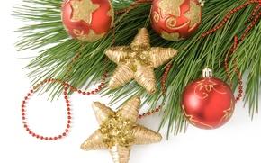 Picture stars, balls, balls, toys, tree, branch, New Year, Christmas, red, Christmas, gold, New Year, Christmas
