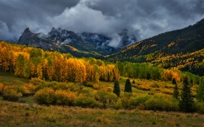Picture autumn, forest, mountains, clouds, Colorado, USA, rainy day, San Juan Mountains