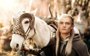 Picture horse, the Lord of the rings, art, lord of the rings, Orlando Bloom, Legolas