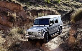 Picture Mercedes-Benz, G55, Gaelic, Gelding, G-class, All-terrain vehicles