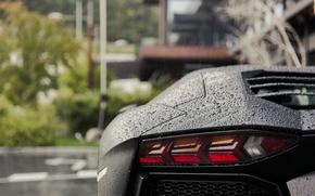 Picture rain, Lamborghini, Aventador
