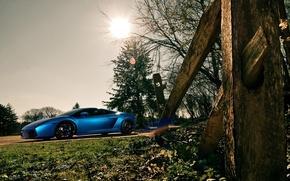 Picture Lamborghini, Gallardo, supercar, cars, auto, cars walls, Supercars, tuning cars, Lamborghini Gallardo