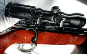 Picture background, optics, rifle, shutter