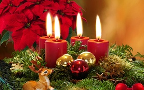 Wallpaper flowers, branches, balls, tree, candles, Christmas, Christmas, poinsettia, puansetiya, Fawn
