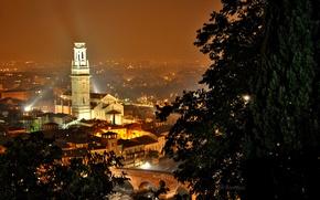 Picture trees, night, bridge, lights, river, home, Italy, Verona