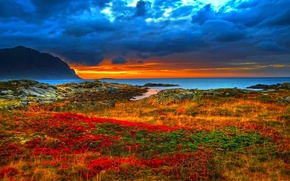 Picture GRASS, MOUNTAINS, HORIZON, The OCEAN, The SKY, FLOWERS, SUNSET, CLOUDS, COAST, SHORE, DAWN, ROCKS