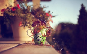 Picture leaves, trees, flowers, squirt, background, widescreen, Wallpaper, tea, mood, blur, mug, wallpaper, widescreen, background, full …