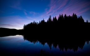 Picture forest, lake, reflection, black, the evening