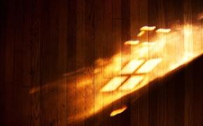Picture light, logo, floor, windows, the play of light, laminate