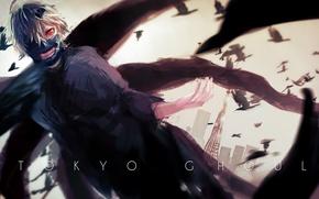 Picture anime, mask, white hair, anime, red eye, Tokyo Ghoul, Ken Kanek, Tokyo Ghoul, The Kaneko …