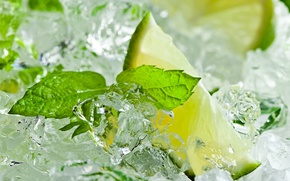 Picture citrus, lime, mint leaves, ice