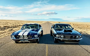 Picture mustang, ford, power, america, 302, boss