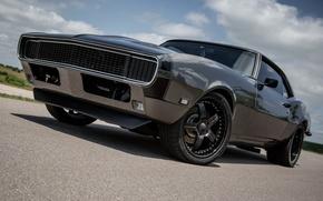 Picture Chevrolet, Camaro, Black, 1968, 502