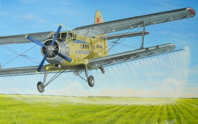 """Picture field, aviation, figure, art, the plane, pollination, multipurpose, Soviet, easy, herbicide, """"Corncob"""", agricultural, An-2"""