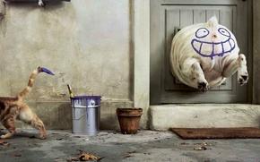 Wallpaper humor, Paint, cat, dog
