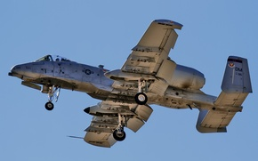 Picture weapons, the plane, A-10 Thunderbolt