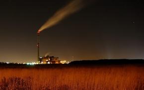 Wallpaper night, the sky, plant, field