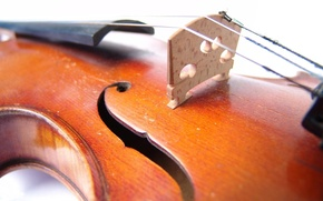 Wallpaper yellow, violin, music