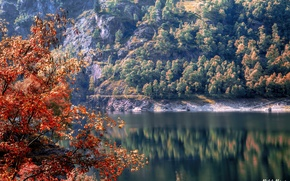 Picture autumn, trees, river, rocks, Italy, Piedmont