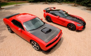 Picture viper, dodge, challenger, 2009, two beauties