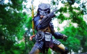 Picture toy, predator, being, figurine, Predator, thing