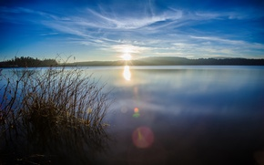 Picture forest, the sun, lake, glare, hills