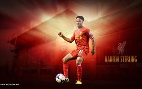 Picture Liverpool, Raheem Sterling, footbol