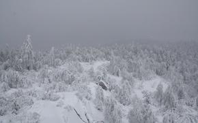 Picture snow, mountains, tale, shop