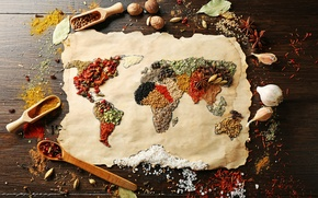 Picture Anis, pepper, world map, continents, coarse salt, nutmeg, thyme, Bay leaf, positive, spices, spices, garlic, ...