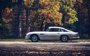 Picture road, forest, Aston Martin, 1965, DB5
