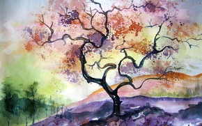 Wallpaper tree, picture, watercolor