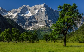 Picture the sky, grass, trees, mountains, valley