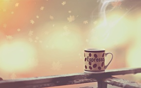 Picture coffee, morning, Cup, photo, photographer, espresso, Alessandro Di Cicco