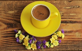 Wallpaper flowers, coffee, Cup, saucer