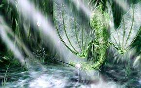 Picture dragon, swamp, green