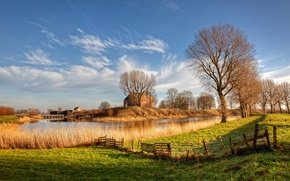 Picture light, trees, nature, river, Netherlands, Holland