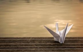 Picture paper, background, origami, crane